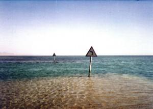 שלטים בים