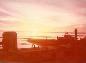 תמונה292